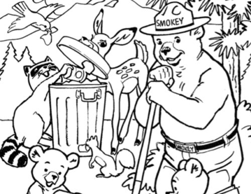 preview of Help Prevent Forest Fires with Smokey