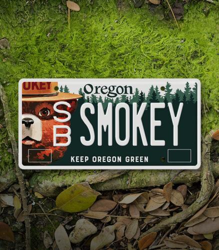 Smokey_Bear_License_Plate_Thumb