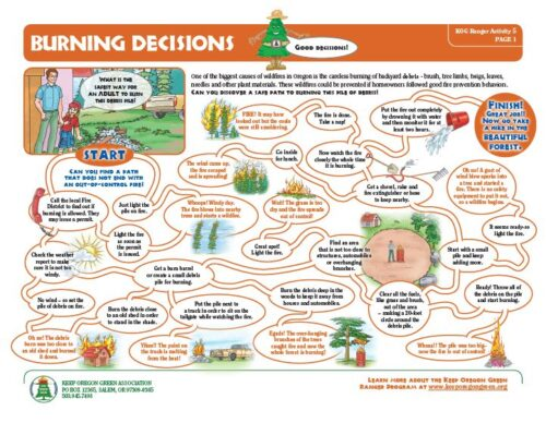 preview of Burning Decisions